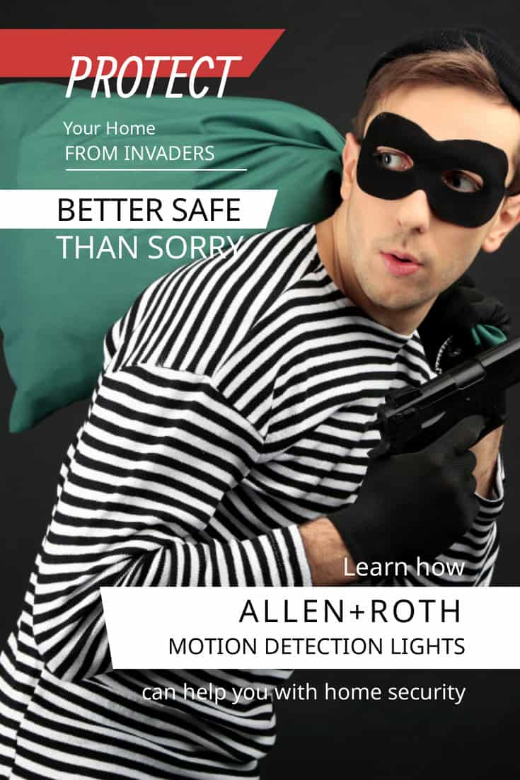 How To Organize Security With Allen+roth Lights And Wireless Security Cameras: thief